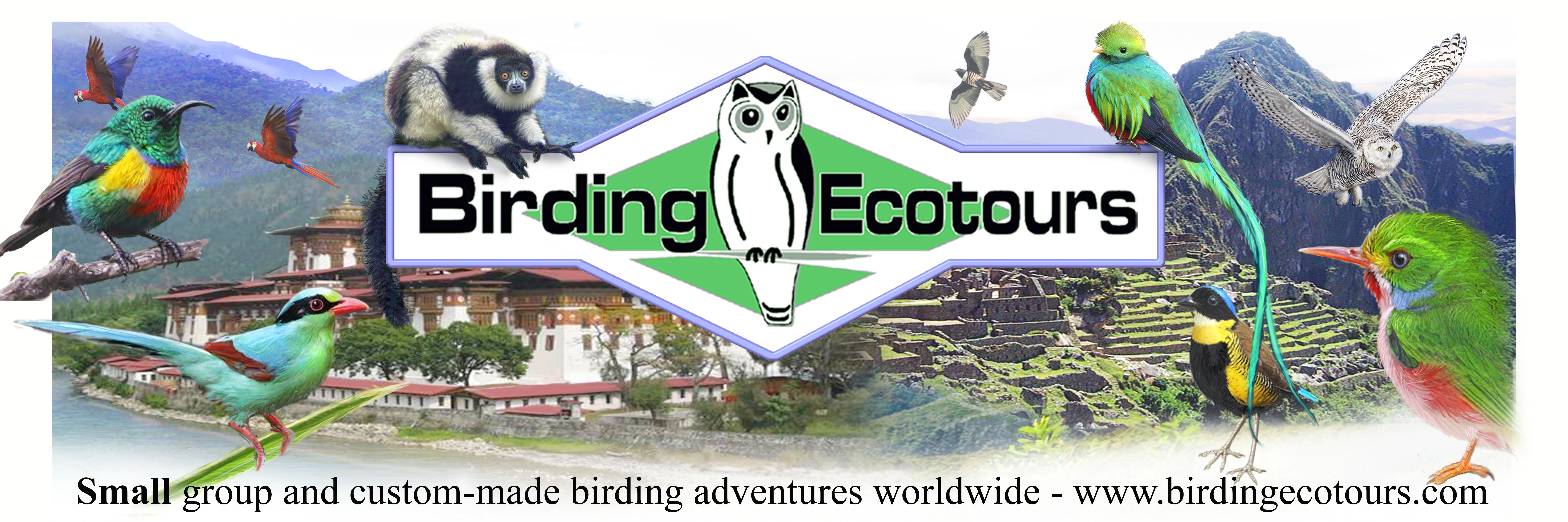 Birding Ecotours-small group and custom-made birding adventures worldwide